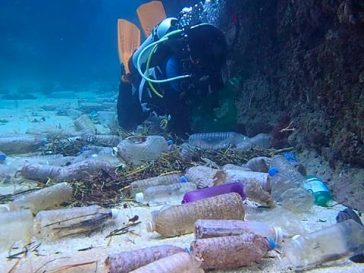 All Marine EcoSystems Affected by Plastic Pollution