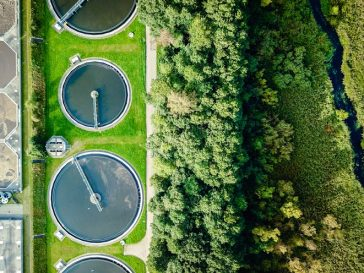 Enterprise Ireland's Lean and Green Business Model